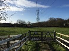 Nearby farm